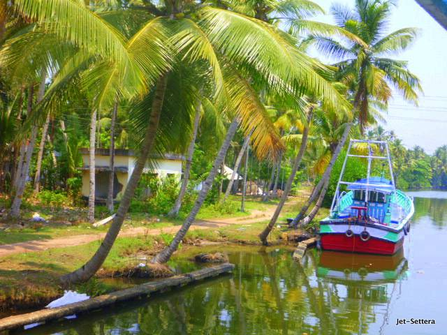 Backwaters in Kerala - Best Places to Visit in India