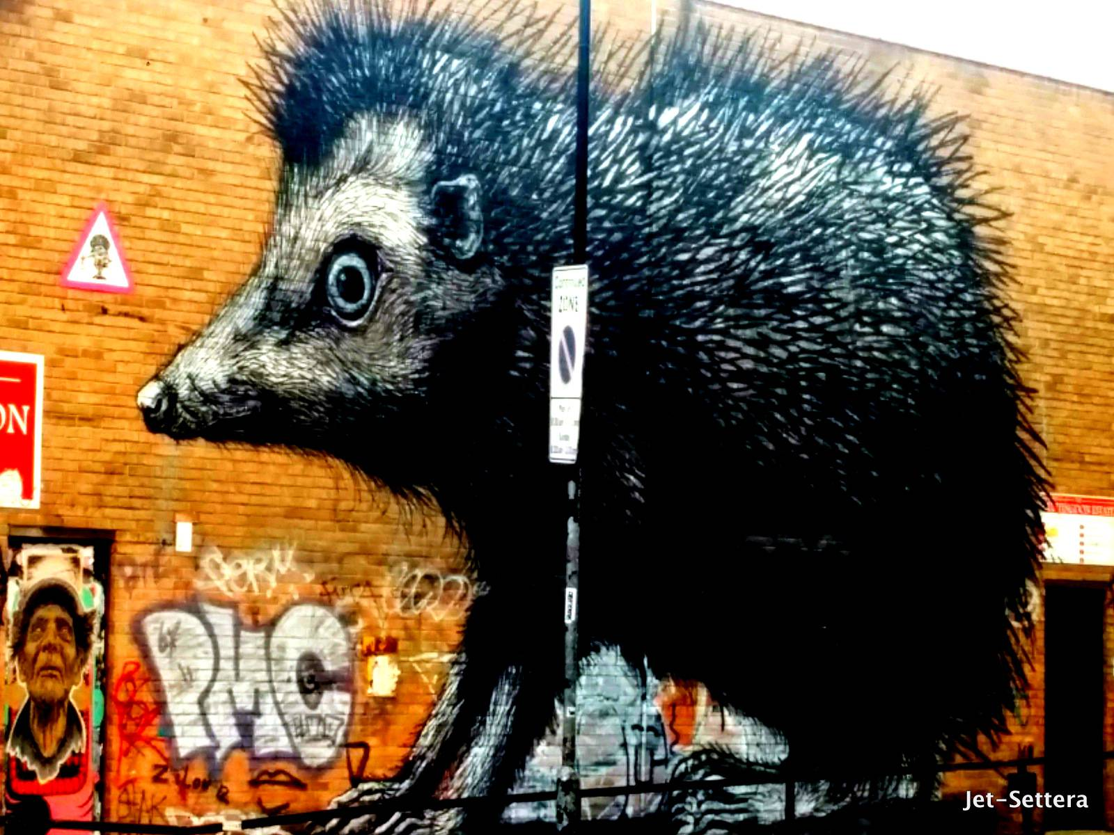 Porcupine by ROA