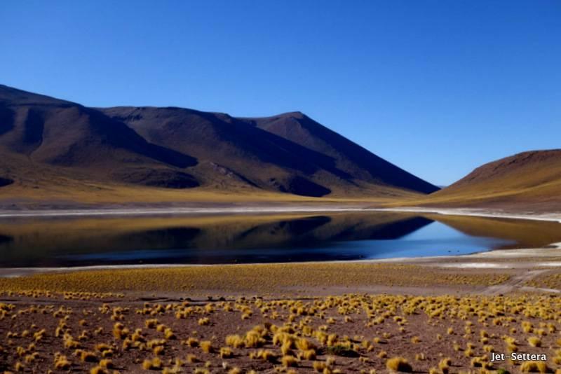 Lago Miniques - San Pedro de Atacama Tours